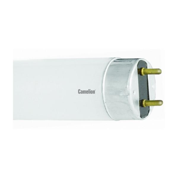 лампа ЛБ 10W FТ8/54 6500К CAMELION  3006( 1107 )