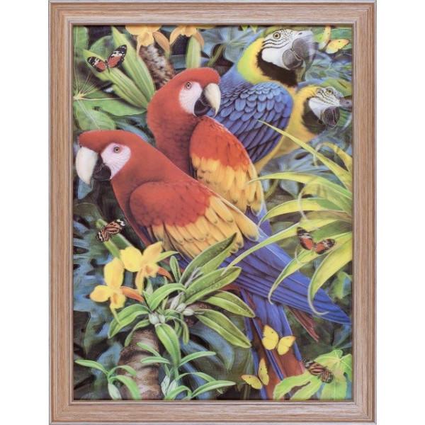 картина 5D 674998 30х40 245 Попугаи( 2708 )