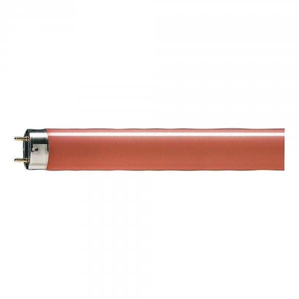 лампа 36W/16 G13 TL-D красная, желтая PHILIPS( 5500 )
